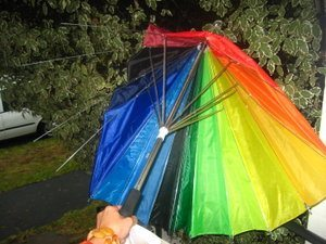 sdfp gay umbrella