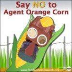sdfp agent-orange-corn