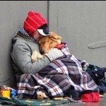 sdfp homeless-dog1