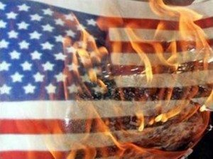 sdfp american_flag_burning