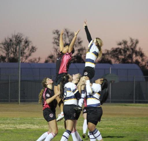 rugby girls cheerlead