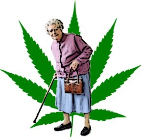 marijuanaelderly
