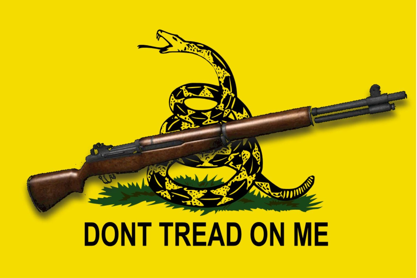 The stand off at the bundy ranch in nevada has inspired the rightwing