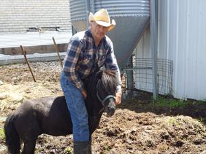 Cowboy on a pony.