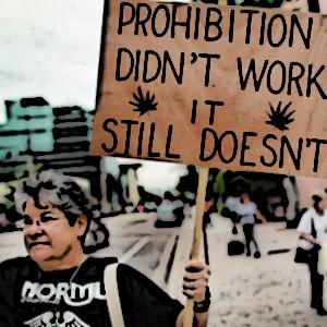 potprohibition