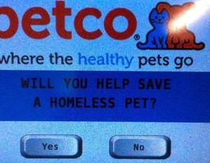 petco charity 1