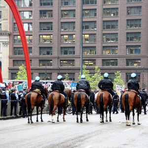 Mounted police from the rear