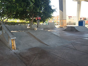 The Tony Hawk Foundation kicked in $10,000 for the Chicano Park Skate Lane.