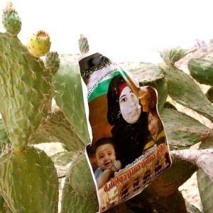 Reflections on Palestine: Symbols of Homeland