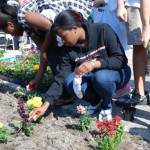 Local Gardens: A Healthy Way to Build Communities