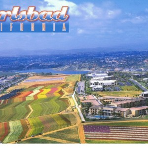 Carlsbad Council Outsources City's Future Again