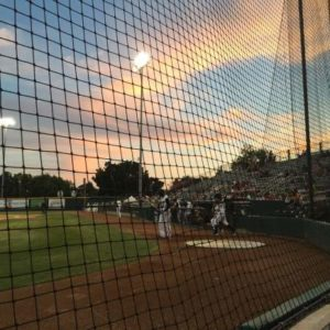 2016 Summer Chronicles 4: Bush League Nation