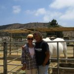 Ferdinand's Friendly Familia: Animal Sanctuary in Imperial Beach