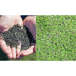 Artificial Turf Wars in San Diego Schools