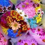 Demand Sustainably Produced Cut Flowers