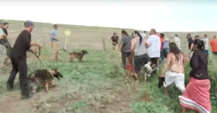 Pipeline Company Attacks Native Americans With Dogs And Pepper Spray