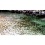 Geo-Poetic Spaces: Leaf in River