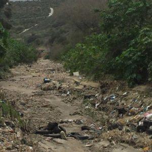 The San Diego-Tijuana Border Under Siege? Donald Trump's Executive Order