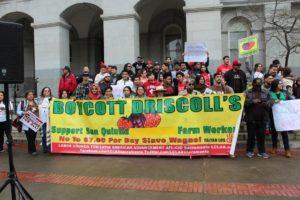 Driscoll's Boycott