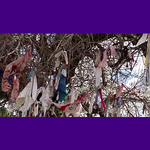 Geo-Poetic Spaces: The Wishing Tree