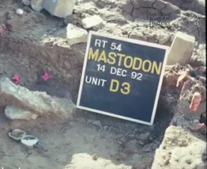 Mastodon San Diego Early human habitation