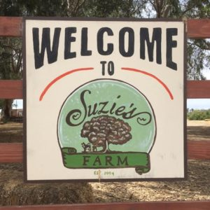 Suzie's Farm: Gone, But Not Forgotten